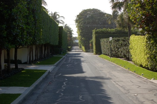 I love the high private hedges along the streets of Palm Beach.
