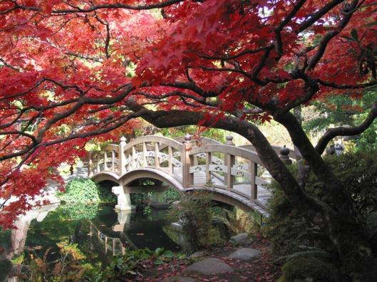 http://conferodezso.wordpress.com/2012/04/30/a-love-of-japanese-gardens/